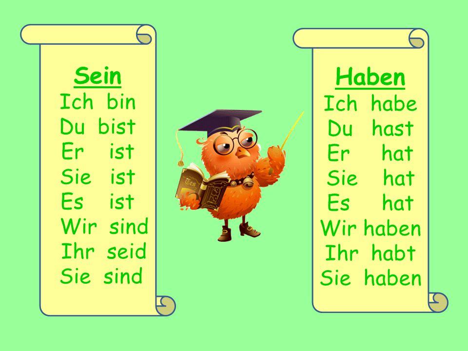 Perfekt = haben/sein + Partizip II SEIN HABEN