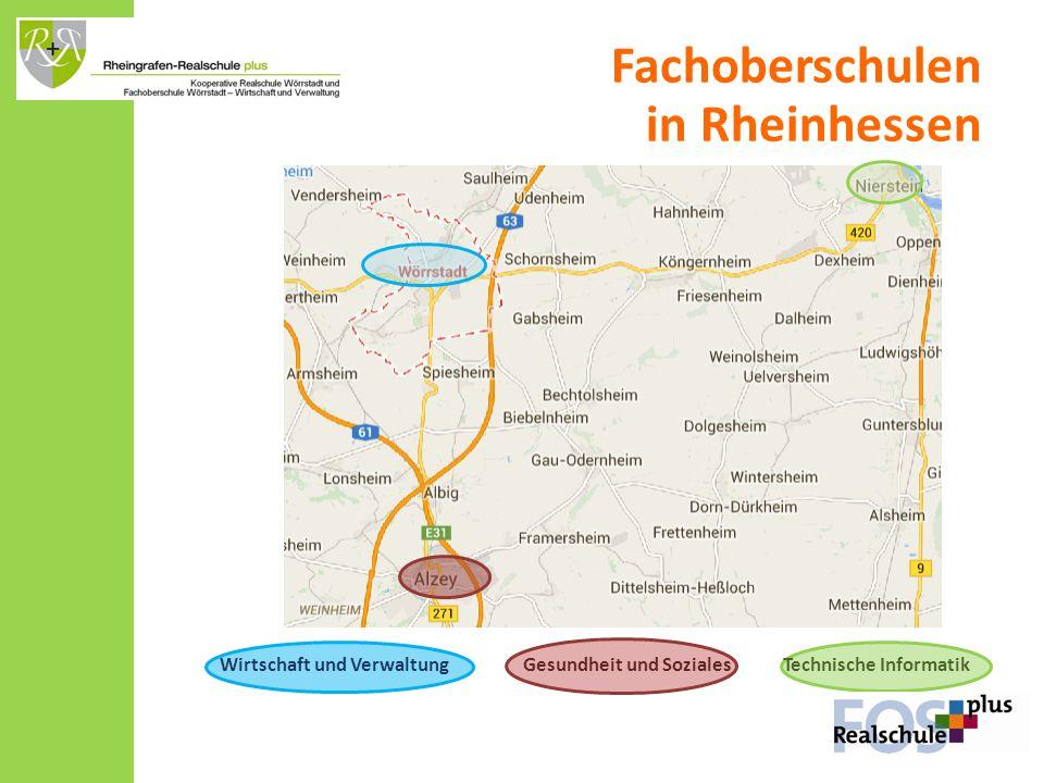 Bingen Wirtschaft und Verwaltung Gesundheit und Soziales Technische Informatik Fachoberschulen in Rheinhessen