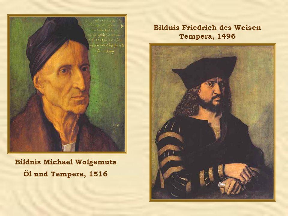 Bildnis Michael Wolgemuts Öl und Tempera, 1516 Bildnis Friedrich des Weisen Tempera, 1496