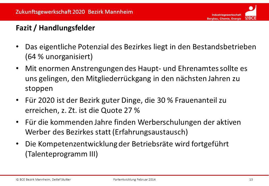 Zukunftsgewerkschaft 2020 Bezirk Mannheim Fazit / Handlungsfelder IG BCE Bezirk Mannheim, Detlef Stutter13 Das eigentliche Potenzial des Bezirkes lieg