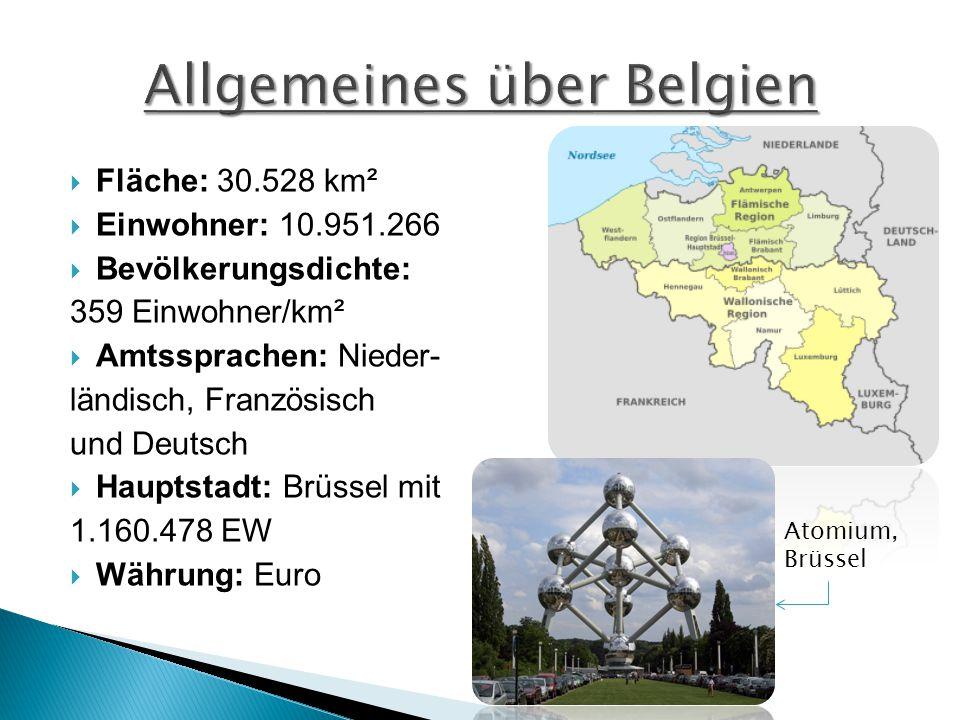  Fläche: 30.528 km²  Einwohner: 10.951.266  Bevölkerungsdichte: 359 Einwohner/km²  Amtssprachen: Nieder- ländisch, Französisch und Deutsch  Haupt