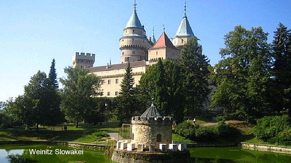 Burg bei Seefeld (Tirol) Österreich