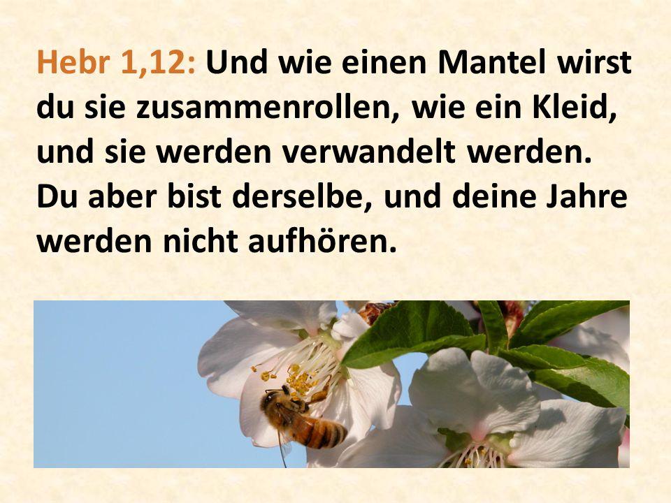 Hebr 1,12: Und wie einen Mantel wirst du sie zusammenrollen, wie ein Kleid, und sie werden verwandelt werden. Du aber bist derselbe, und deine Jahre w