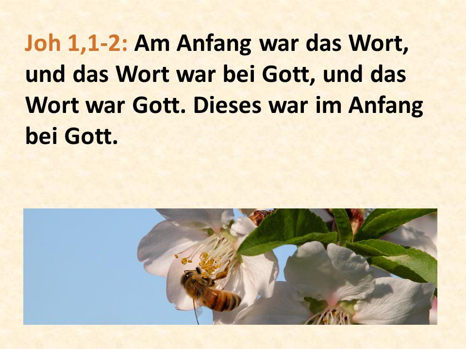 Joh 1,1-2: Am Anfang war das Wort, und das Wort war bei Gott, und das Wort war Gott. Dieses war im Anfang bei Gott.