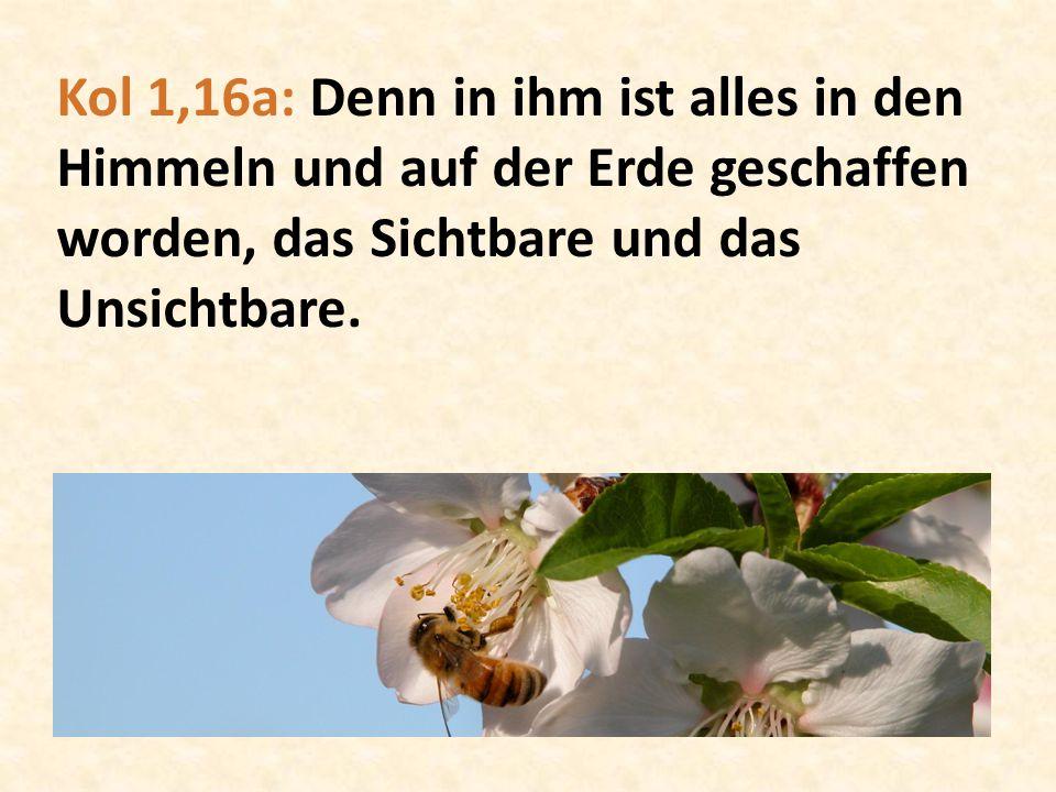 Kol 1,16a: Denn in ihm ist alles in den Himmeln und auf der Erde geschaffen worden, das Sichtbare und das Unsichtbare.