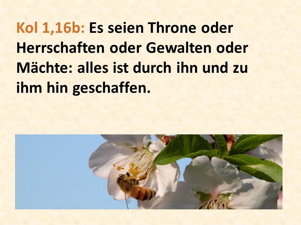 Kol 1,16b: Es seien Throne oder Herrschaften oder Gewalten oder Mächte: alles ist durch ihn und zu ihm hin geschaffen.