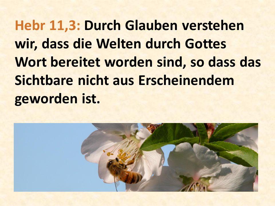Hebr 11,3: Durch Glauben verstehen wir, dass die Welten durch Gottes Wort bereitet worden sind, so dass das Sichtbare nicht aus Erscheinendem geworden