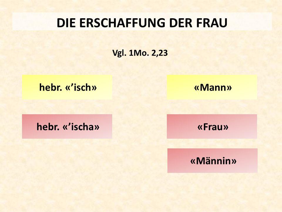 DIE ERSCHAFFUNG DER FRAU hebr. «'ischa» hebr. «'isch» Vgl. 1Mo. 2,23 «Mann» «Frau» «Männin»