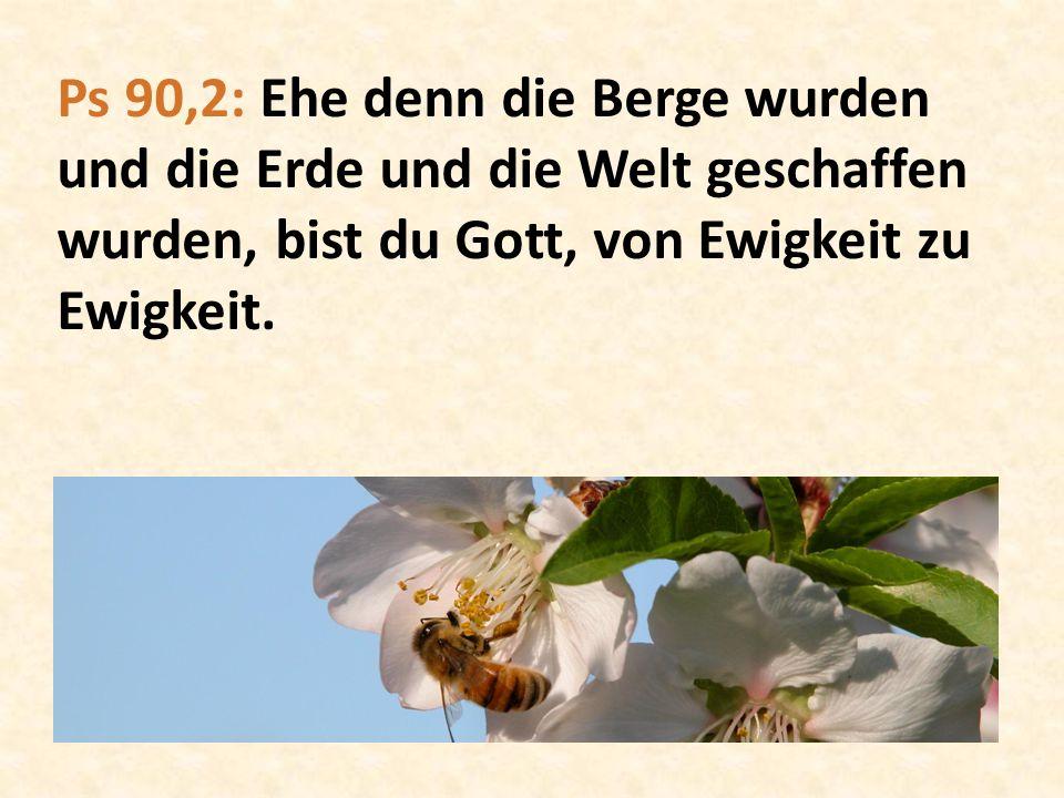 DER GARTEN EDEN Bild: Lucas Cranach der Ältere (1530)