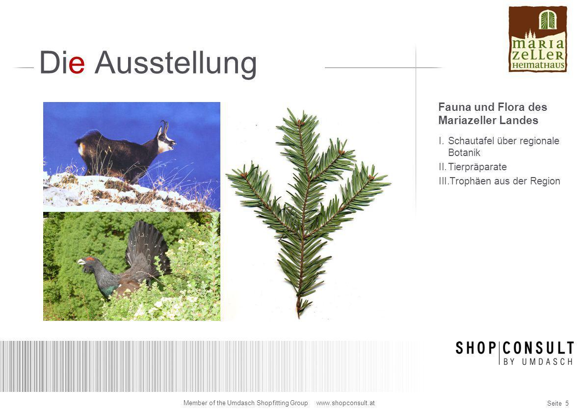 Seite 16 Member of the Umdasch Shopfitting Group www.shopconsult.at Designidee Wandpräsentation Meranjäger Vitrinen