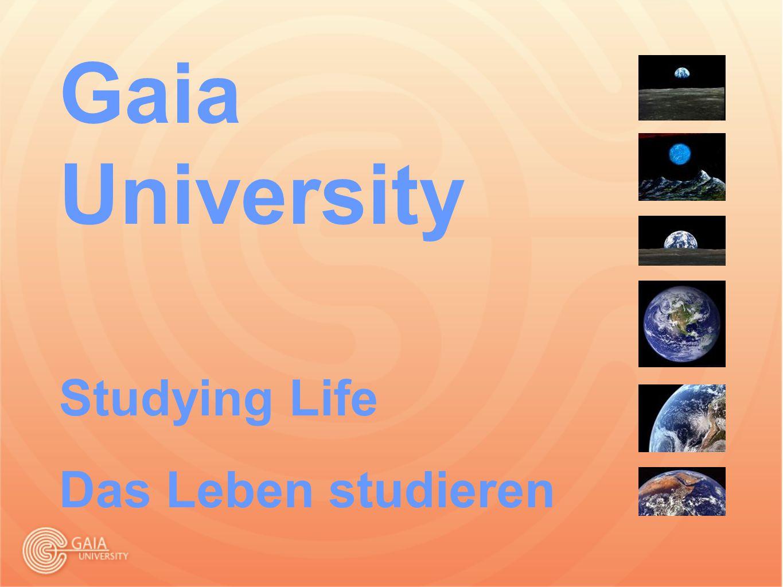 Gaia University Studying Life Das Leben studieren