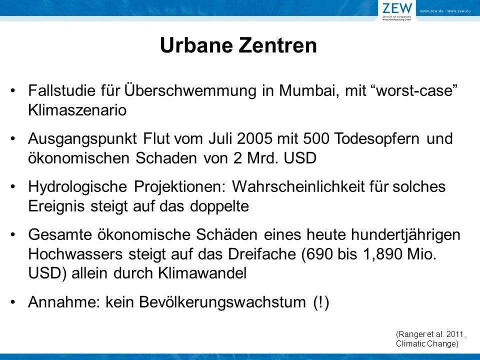"""Urbane Zentren Fallstudie für Überschwemmung in Mumbai, mit """"worst-case"""" Klimaszenario Ausgangspunkt Flut vom Juli 2005 mit 500 Todesopfern und ökonom"""