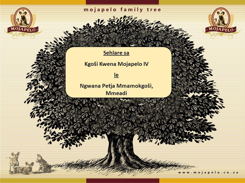 Sehlare sa Kgoši Kwena Mojapelo IV le Ngwana Petja Mmamokgoši, Mmeadi