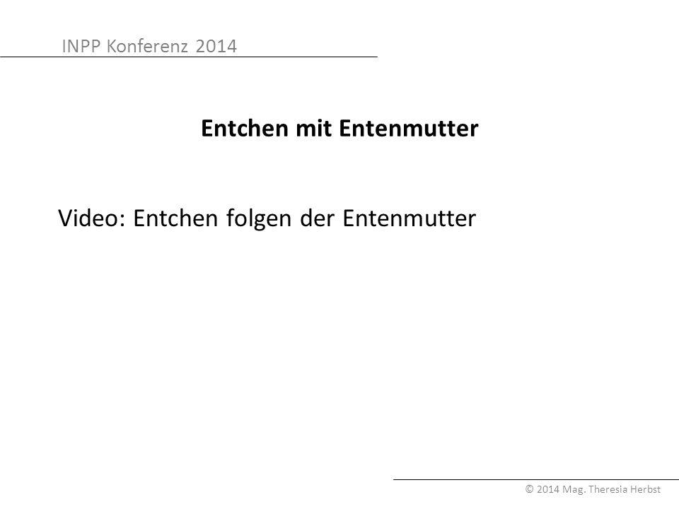 INPP Konferenz 2014 © 2014 Mag. Theresia Herbst Entchen mit Entenmutter Video: Entchen folgen der Entenmutter