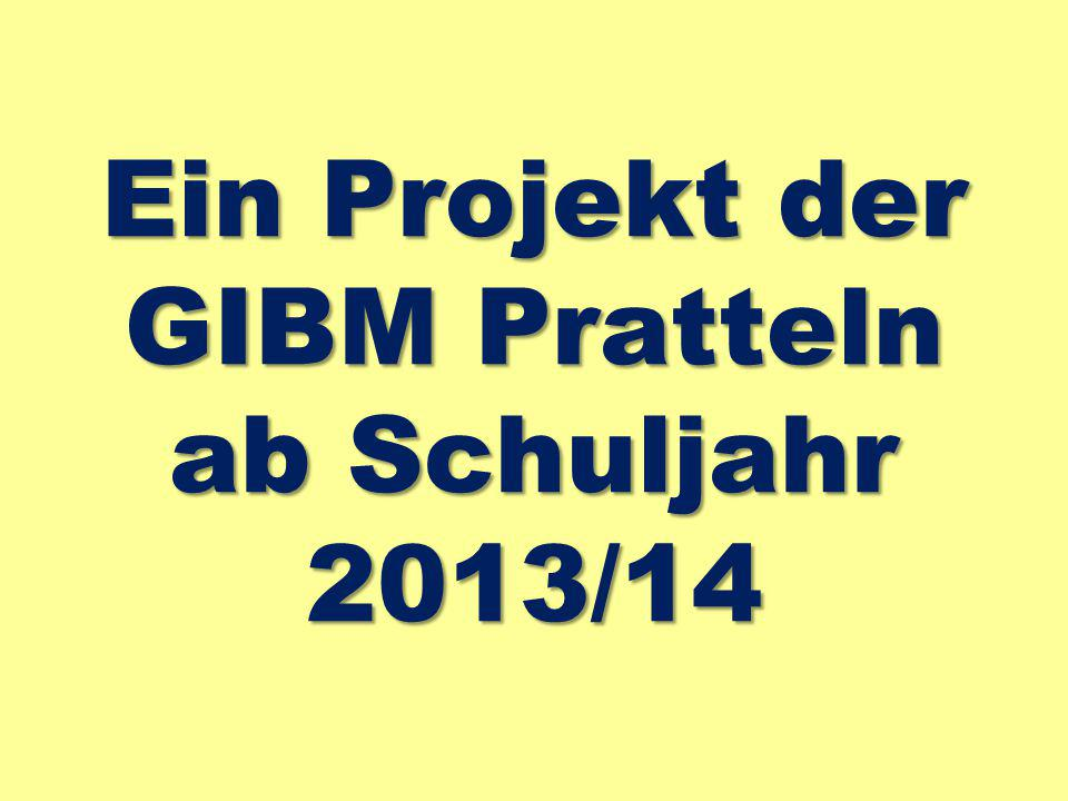 Ein Projekt der GIBM Pratteln ab Schuljahr 2013/14