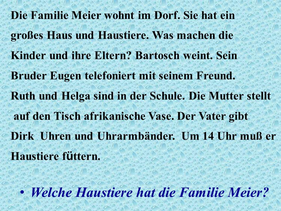 Die Familie Meier wohnt im Dorf. Sie hat ein großes Haus und Haustiere.