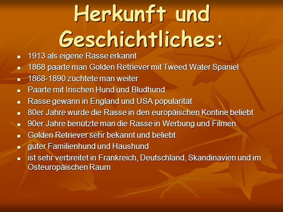Herkunft und Geschichtliches: 1913 als eigene Rasse erkannt 1913 als eigene Rasse erkannt 1868 paarte man Golden Retriever mit Tweed Water Spaniel 186