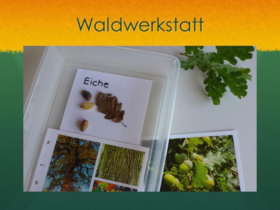 Waldwerkstatt
