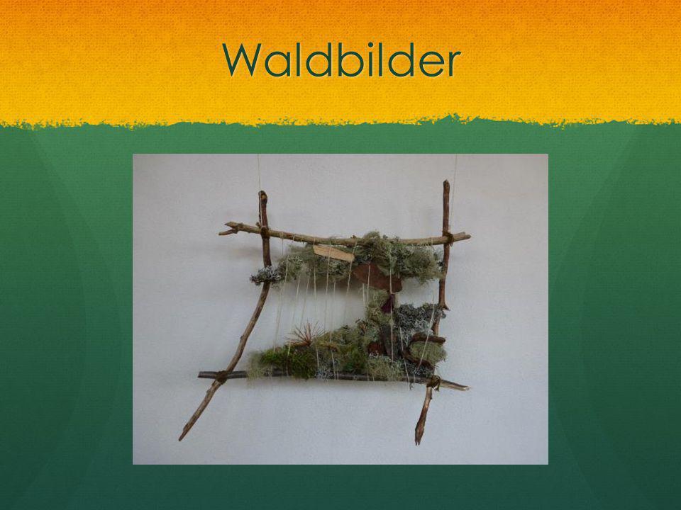 Waldbilder