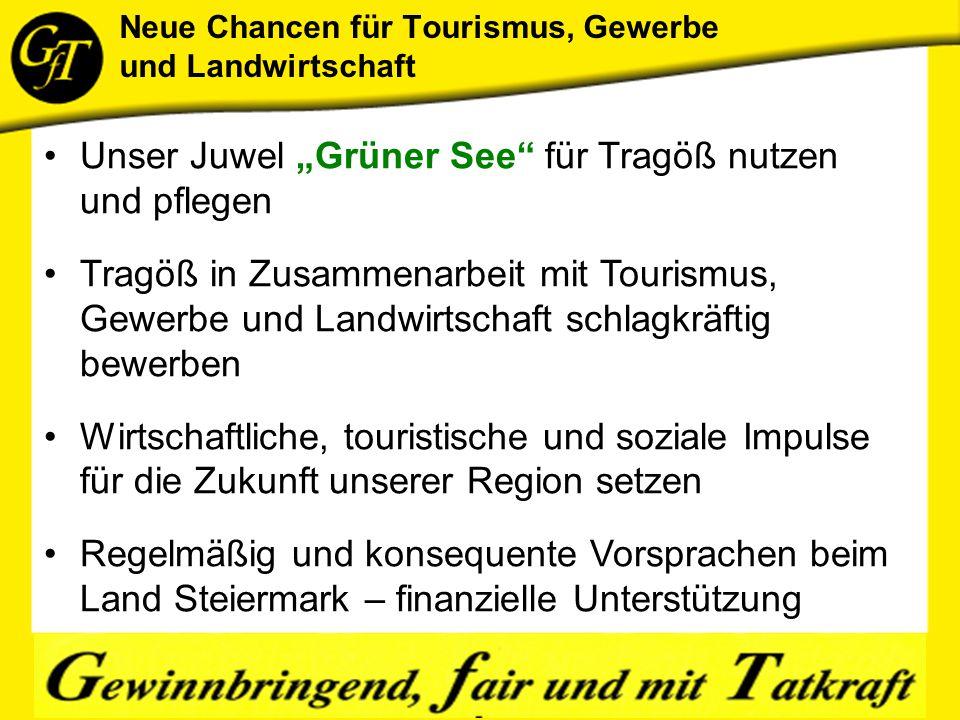 """Unser Juwel """"Grüner See für Tragöß nutzen und pflegen Tragöß in Zusammenarbeit mit Tourismus, Gewerbe und Landwirtschaft schlagkräftig bewerben Wirtschaftliche, touristische und soziale Impulse für die Zukunft unserer Region setzen Regelmäßig und konsequente Vorsprachen beim Land Steiermark – finanzielle Unterstützung"""