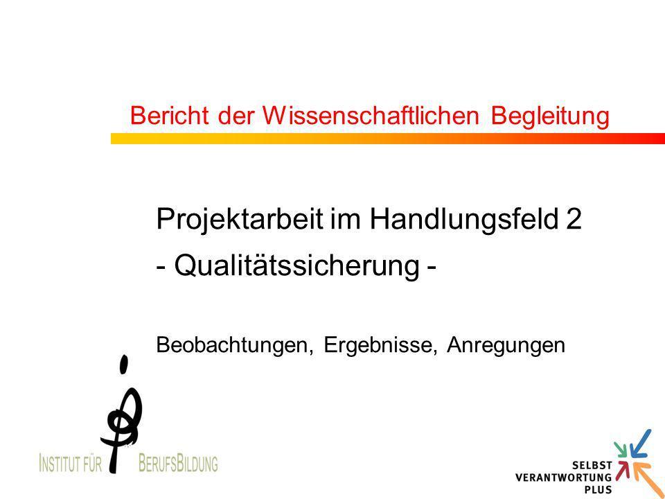 Bericht der Wissenschaftlichen Begleitung Projektarbeit im Handlungsfeld 2 - Qualitätssicherung - Beobachtungen, Ergebnisse, Anregungen