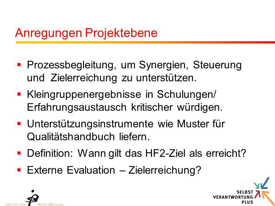 Anregungen Projektebene  Prozessbegleitung, um Synergien, Steuerung und Zielerreichung zu unterstützen.