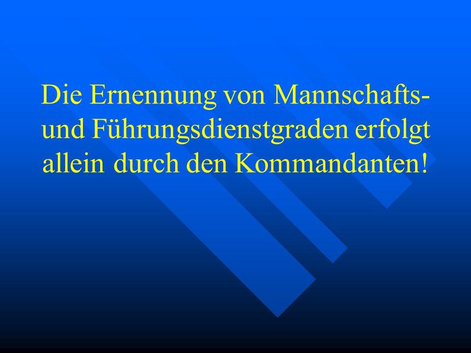 Führungsdienstgrade Löschmeister Oberlöschmeister Hauptlöschmeister Brandmeister Oberbrandmeister Hauptbrandmeister