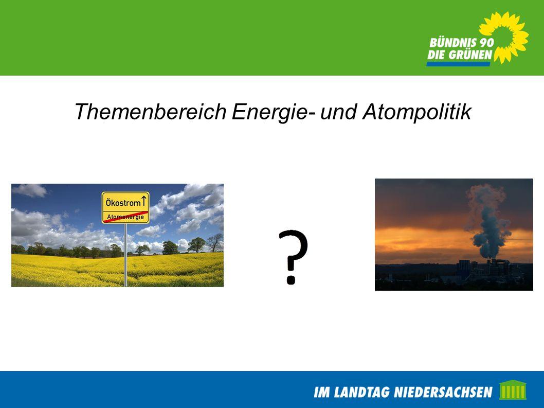 Themenbereich Energie- und Atompolitik