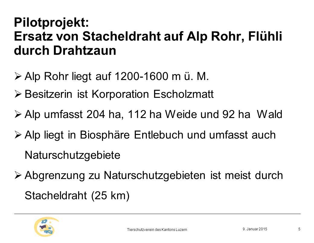 Pilotprojekt: Ersatz von Stacheldraht auf Alp Rohr, Flühli durch Drahtzaun  Alp Rohr liegt auf 1200-1600 m ü.