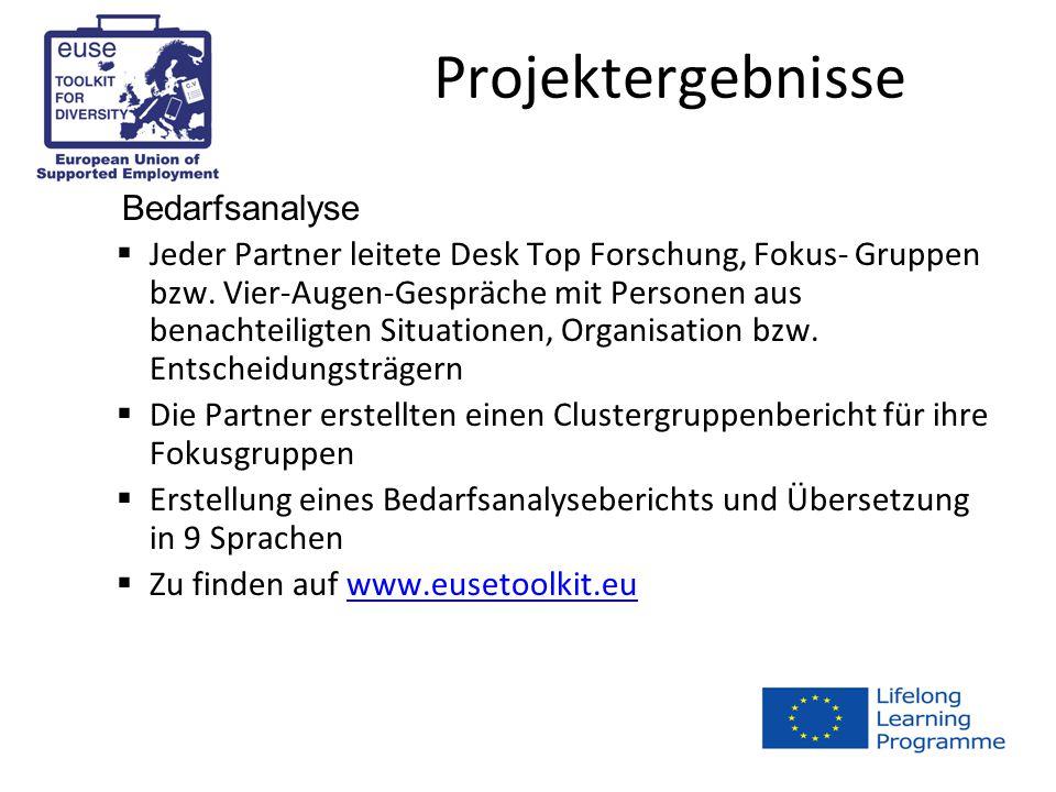 Projektergebnisse Bedarfsanalyse  Jeder Partner leitete Desk Top Forschung, Fokus- Gruppen bzw.