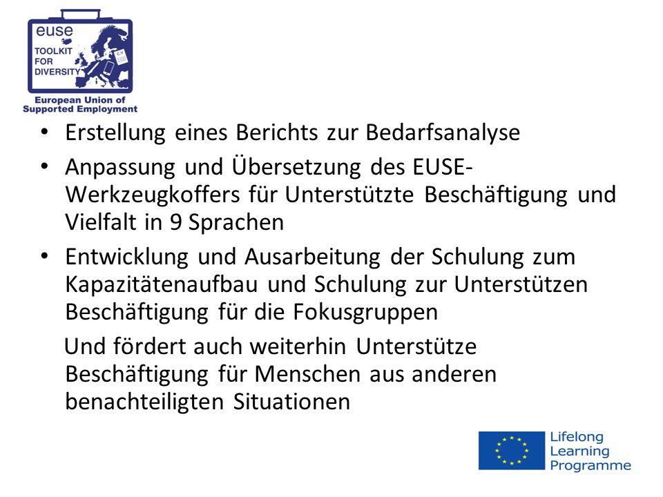 Erstellung eines Berichts zur Bedarfsanalyse Anpassung und Übersetzung des EUSE- Werkzeugkoffers für Unterstützte Beschäftigung und Vielfalt in 9 Sprachen Entwicklung und Ausarbeitung der Schulung zum Kapazitätenaufbau und Schulung zur Unterstützen Beschäftigung für die Fokusgruppen Und fördert auch weiterhin Unterstütze Beschäftigung für Menschen aus anderen benachteiligten Situationen