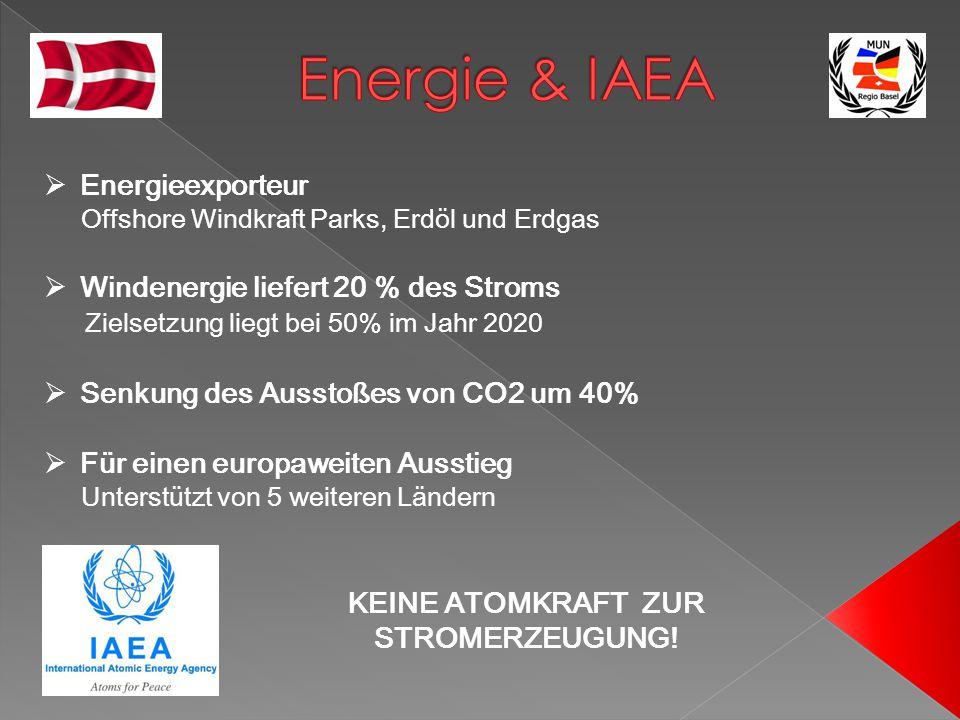  Energieexporteur Offshore Windkraft Parks, Erdöl und Erdgas  Windenergie liefert 20 % des Stroms Zielsetzung liegt bei 50% im Jahr 2020  Senkung d
