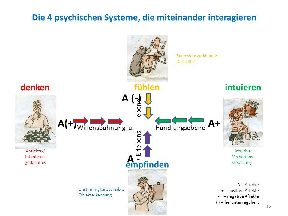 Die 4 psychischen Systeme, die miteinander interagieren 13 Willensbahnung- u.