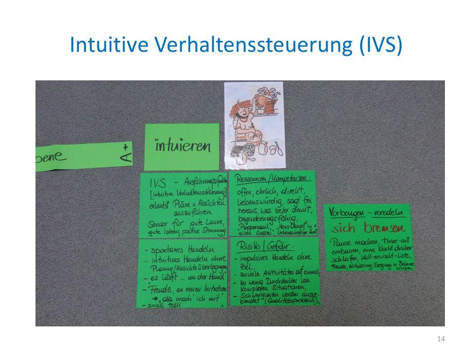 Intuitive Verhaltenssteuerung (IVS) 14