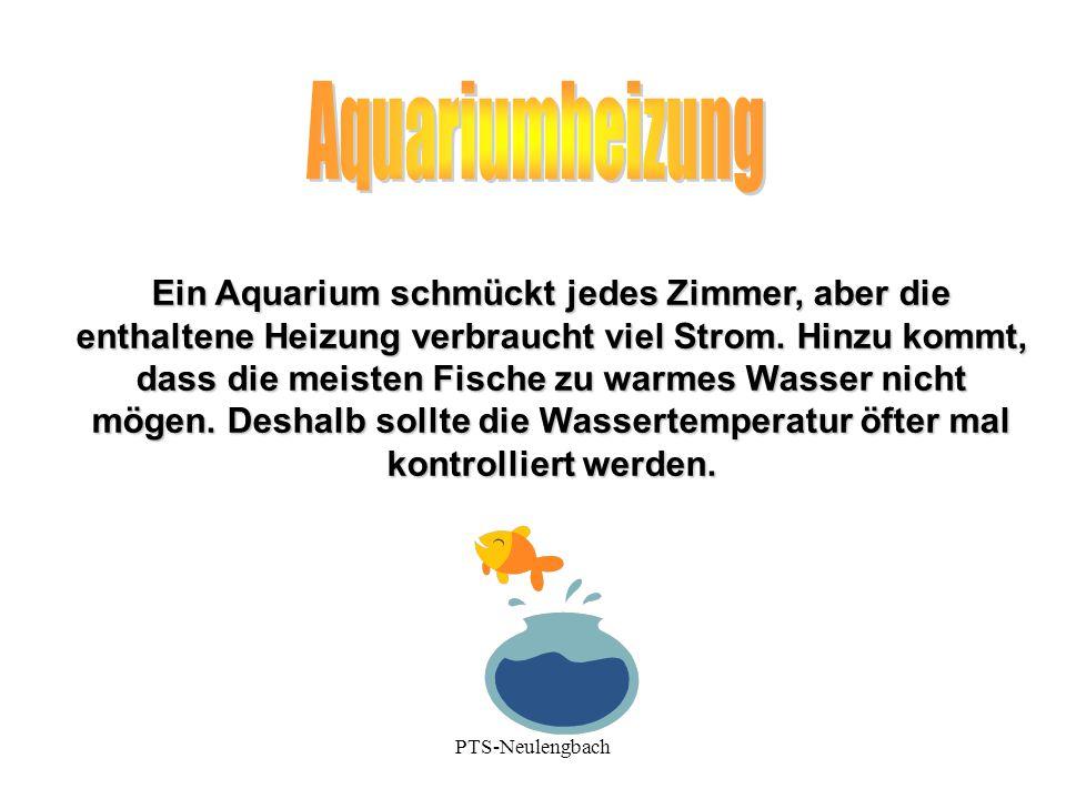 Ein Aquarium schmückt jedes Zimmer, aber die enthaltene Heizung verbraucht viel Strom. Hinzu kommt, dass die meisten Fische zu warmes Wasser nicht mög