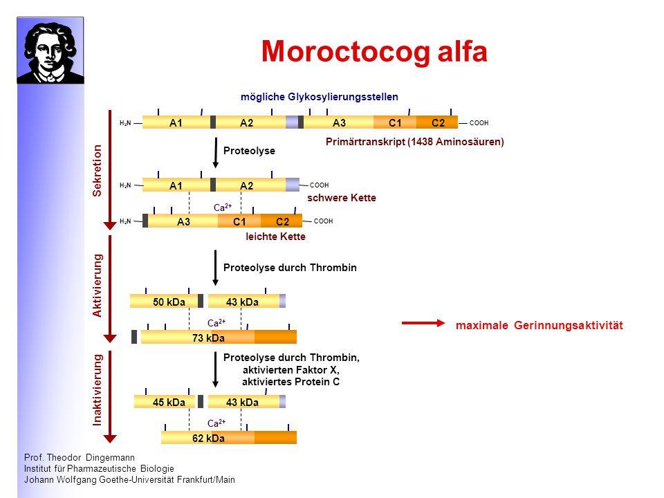 Prof. Theodor Dingermann Institut für Pharmazeutische Biologie Johann Wolfgang Goethe-Universität Frankfurt/Main Moroctocog alfa A1A2A3C1C2 H2NH2NCOOH