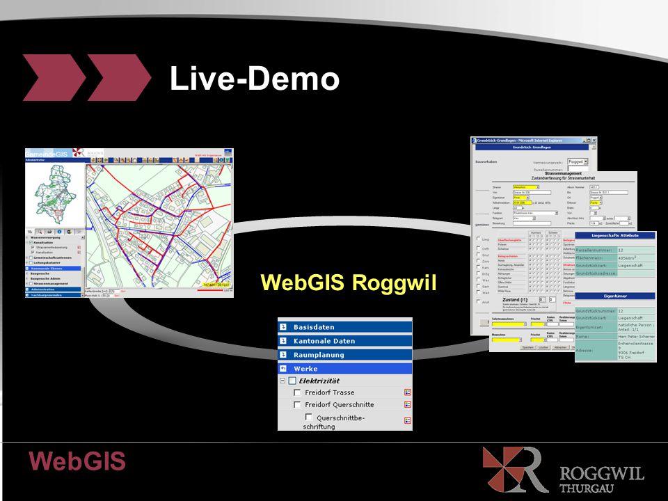 WebGIS Platzhaltertext Live-Demo WebGIS Roggwil