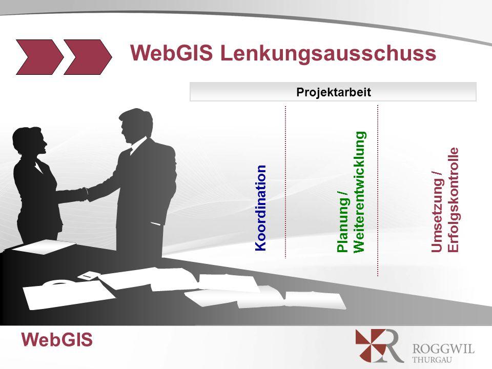 WebGIS 13 Planung / Weiterentwicklung Projektarbeit WebGIS Lenkungsausschuss Koordination Umsetzung / Erfolgskontrolle