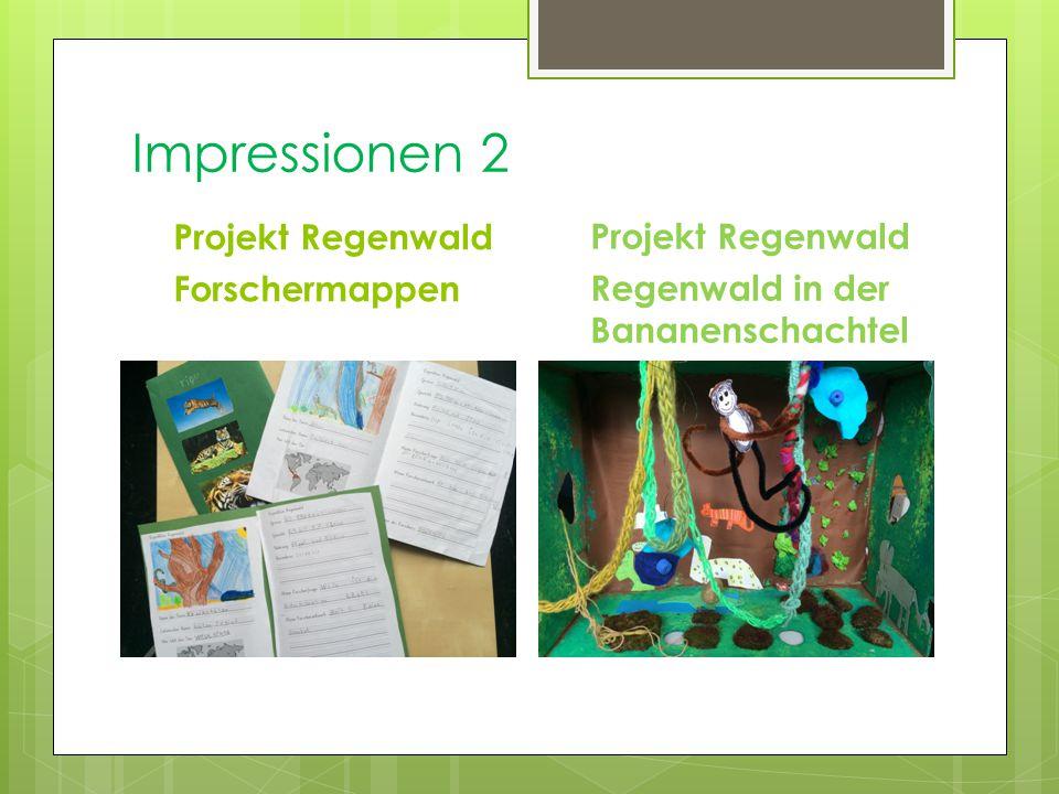 Impressionen 2 Projekt Regenwald Forschermappen Projekt Regenwald Regenwald in der Bananenschachtel