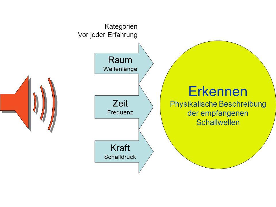 Raum Wellenlänge Zeit Frequenz Kraft Schalldruck Erkennen Physikalische Beschreibung der empfangenen Schallwellen Kategorien Vor jeder Erfahrung