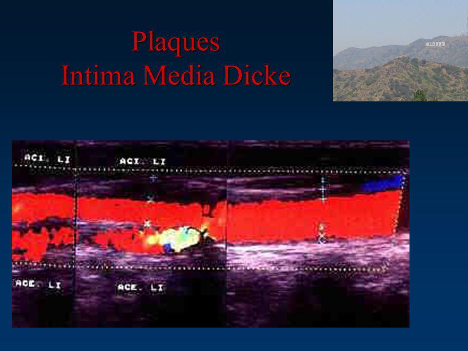 Plaques Intima Media Dicke