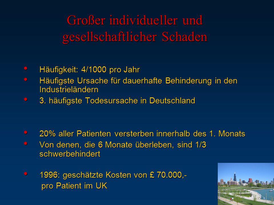 Großer individueller und gesellschaftlicher Schaden Häufigkeit: 4/1000 pro Jahr Häufigkeit: 4/1000 pro Jahr Häufigste Ursache für dauerhafte Behinderu