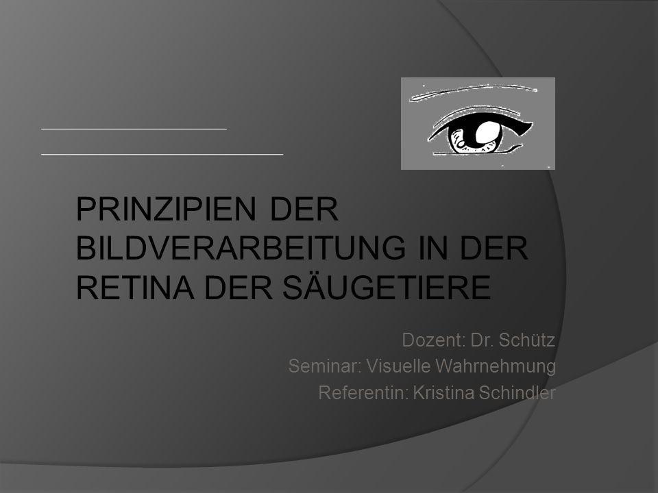 Dozent: Dr. Schütz Seminar: Visuelle Wahrnehmung Referentin: Kristina Schindler