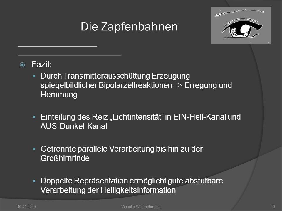 """ Fazit: Durch Transmitterausschüttung Erzeugung spiegelbildlicher Bipolarzellreaktionen –> Erregung und Hemmung Einteilung des Reiz """"Lichtintensität in EIN-Hell-Kanal und AUS-Dunkel-Kanal Getrennte parallele Verarbeitung bis hin zu der Großhirnrinde Doppelte Repräsentation ermöglicht gute abstufbare Verarbeitung der Helligkeitsinformation 10.01.201510Visuelle Wahrnehmung Die Zapfenbahnen"""