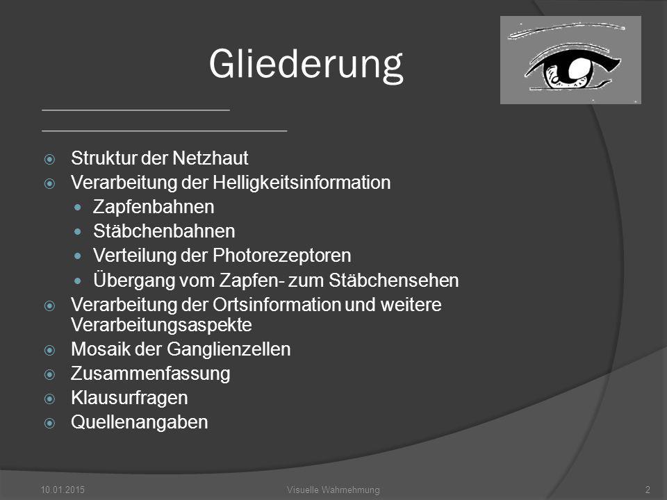 Der Weg des Sehens 10.01.20153Visuelle Wahrnehmung Struktur der Netzhaut Abb.1