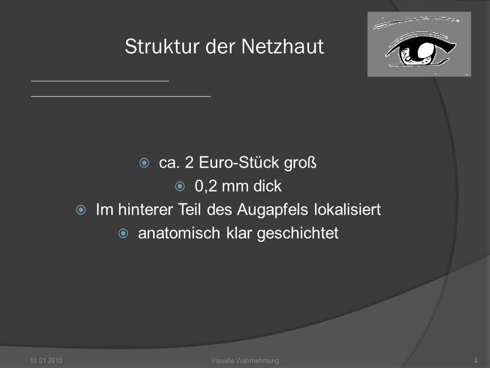  Abb.9 http://images.google.de/imgres?imgurl=http://www.psycholog ie.uni- heidelberg.de/ae/allg/lehre/wct/w/w3_visuelles_system/pictur es/w3_rezeptive_felder02.jpg&imgrefurl=http://www.psycholo gie.uni- heidelberg.de/ae/allg/lehre/wct/w/w3_visuelles_system/w330 _neuronale_verarbeitung.htm&usg=__GJttkEhqt3eS4pwQD OI9m828a9A=&h=331&w=450&sz=34&hl=de&start=2&um= 1&tbnid=PKyChbSM6_PgVM:&tbnh=93&tbnw=127&prev=/i mages%3Fq%3Drezeptive%2Bfeld%26hl%3Dde%26client% 3Dfirefox- a%26rls%3Dorg.mozilla:de:official%26sa%3DN%26um%3D 1  Abb.13 http://upload.wikimedia.org/wikipedia/commons/thumb/e/e0/I shihara_9.png/600px-Ishihara_9.png 10.01.201535Visuelle Wahrnehmung Quellenangaben