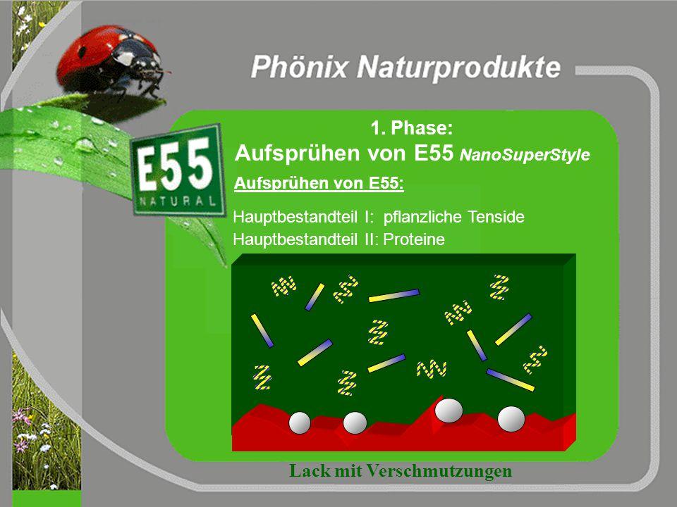 Die Wirkung von E55 NanoSuperStyle im Waschprozess 1. Aufsprühen / Einwirken von E55 2. Zugabe von Aktivschaum / Shampoo 3. Zugabe von Trocknungshilfe