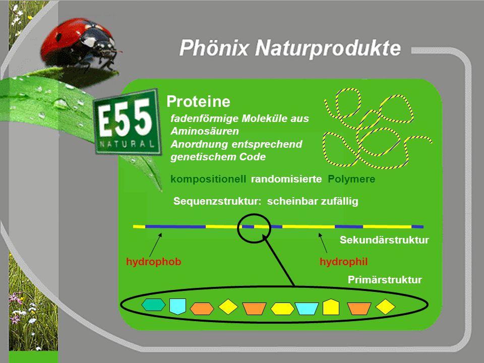 1. Phase: Aufsprühen von E55 NanoSuperStyle Lack mit Verschmutzungen Aufsprühen von E55: Hauptbestandteil I: pflanzliche Tenside Hauptbestandteil II: