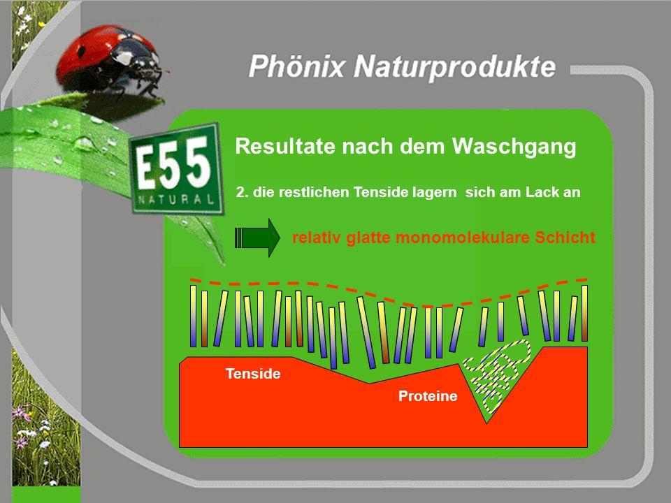 Resultate nach dem Waschgang 1. Schmutzpartikel besitzen eine wasser- verträgliche Hülle a) Proteinfilm b) dicht gepackte natürliche und künstliche Te